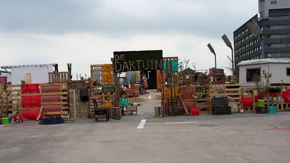 De Daktuin op de Uithof is weer geopend