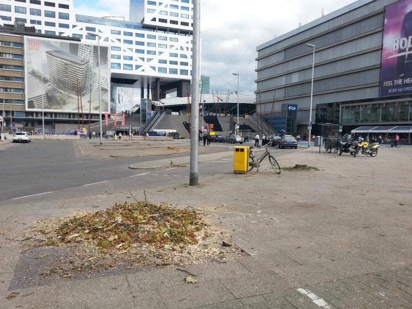 Kaalslag op Jaarbeursplein: alle bomen weggehaald