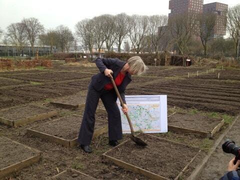 Gemeente Utrecht moedigt Stadslandbouw aan met subsidieregeling