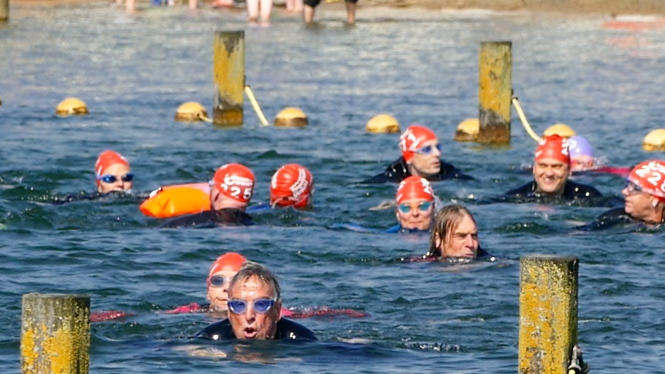 DUIC TV: De laatste training voor de SingelSwim