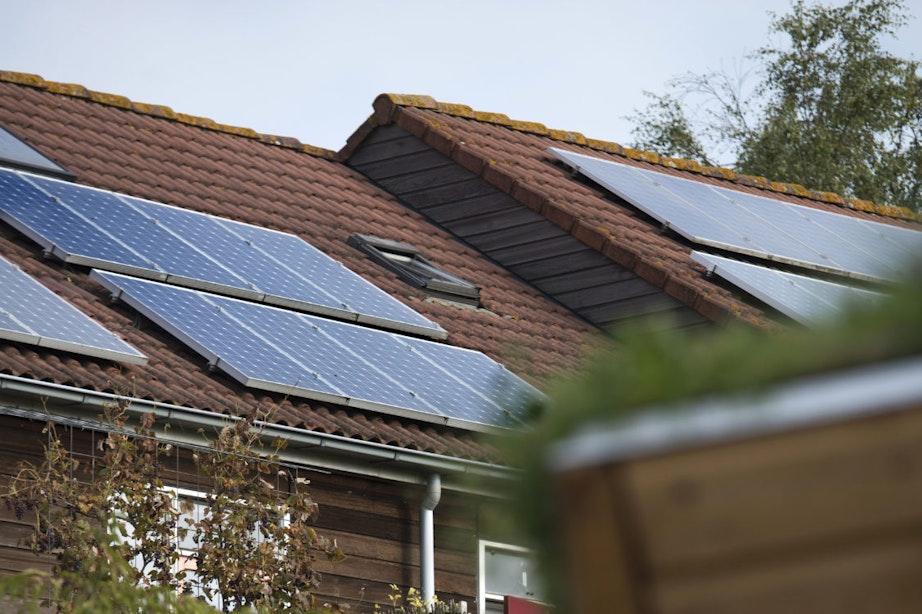 Steeds meer zonnepanelen in de stad: gemeente Utrecht lijkt doelstelling te halen