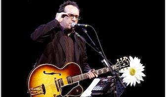 Elvis Costello komt op 15 maart naar Utrecht