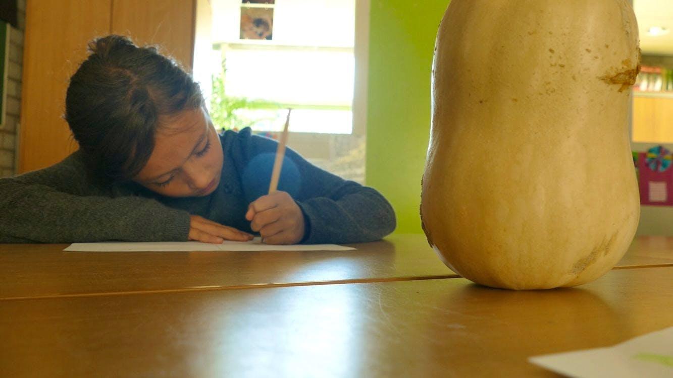 DUIC TV: pompoenen in de klas bij basisschool de Baanbreker