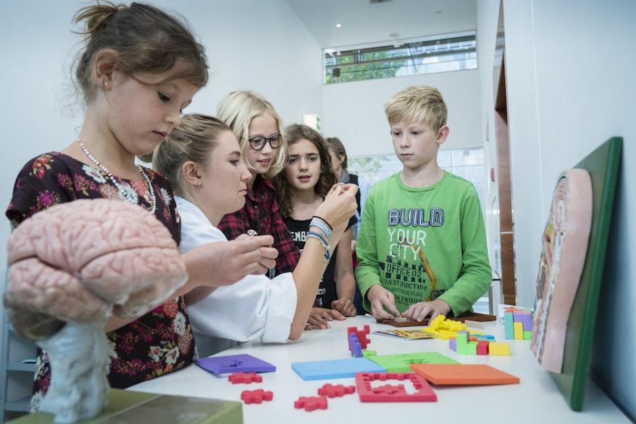 Op stap met de kids in de herfstvakantie: van smartmovies tot snertwandeling