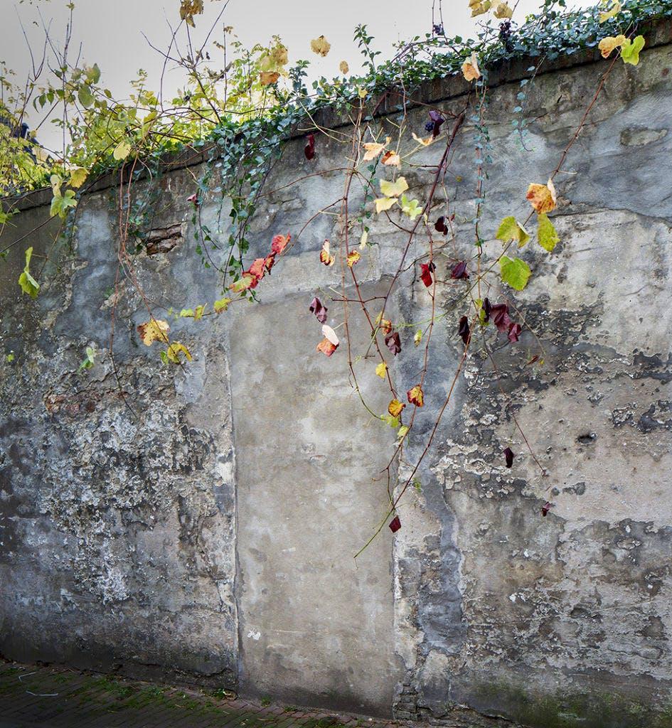 Nieuwe bundel Ingmar Heytze: 'Poëzie in Utrechtse Muren'