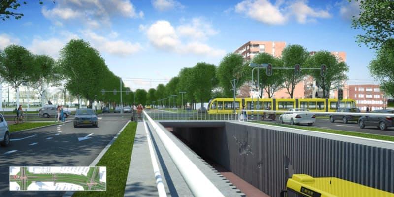 Ruim 280 bomen moeten wijken voor aanleg busbaan Transwijk
