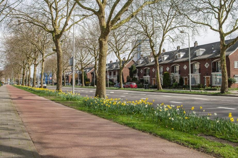 Gemeente Utrecht heeft plannen voor vernieuwing van openbare riolering in Rubenskwartier