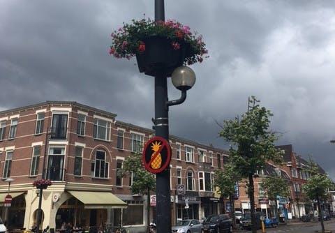 Mysterieuze borden met een 'ananasverbod' rond Amsterdamsestraatweg