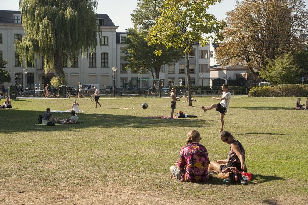 Is meer ruimte voor foodtrucks en drankkraampjes in Utrechtse parken een goed idee? Dat is de vraag