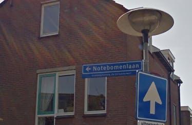 CDA in Utrecht maakt zich zorgen om aanpak ratten in Sterrenwijk