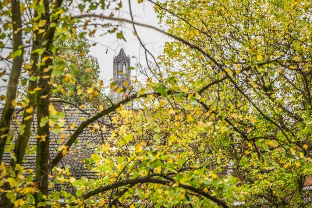 Utrechtse herfst in beeld