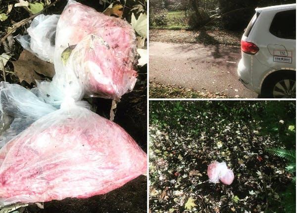 'Lugubere vondst' blijkt een zak kippenbouten