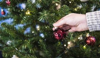 Pop-up doolhof van kerstbomen opent zondag in Leidsche Rijn Centrum