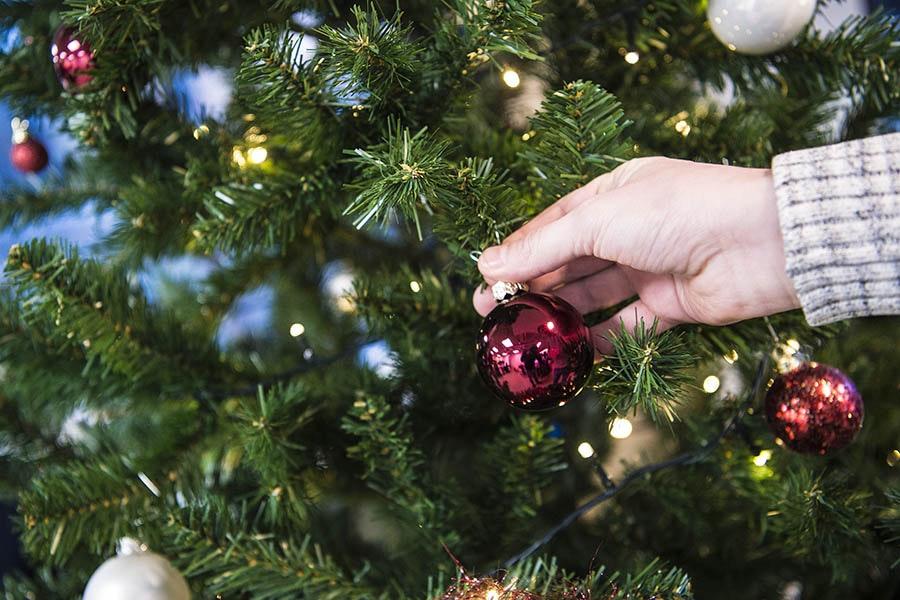Leidsche Rijn Centrum krijgt een pop-up doolhof van kerstbomen