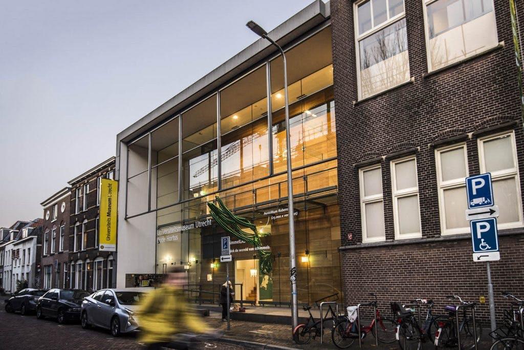 Wetenschappers maken een escaperoom in Universiteitsmuseum