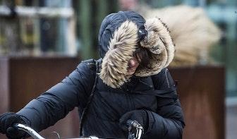 Onstuimig weer in Utrecht: stormschade en hinder voor openbaar vervoer