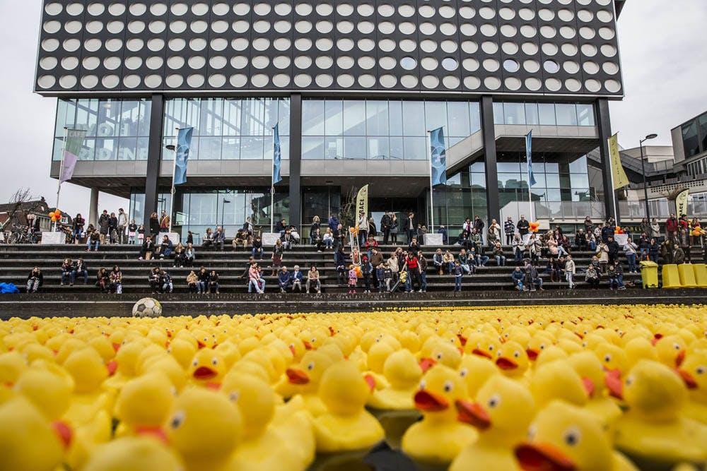 Foto's: 5000 badeenden in de Utrechtse singel