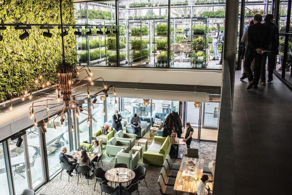 Jette & Jildou drinken koffie: Zuidas-vibe in Utrechtse Green House