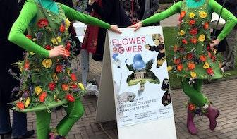 De kracht van bloemen: associaties rondom de tentoonstelling Flower Power