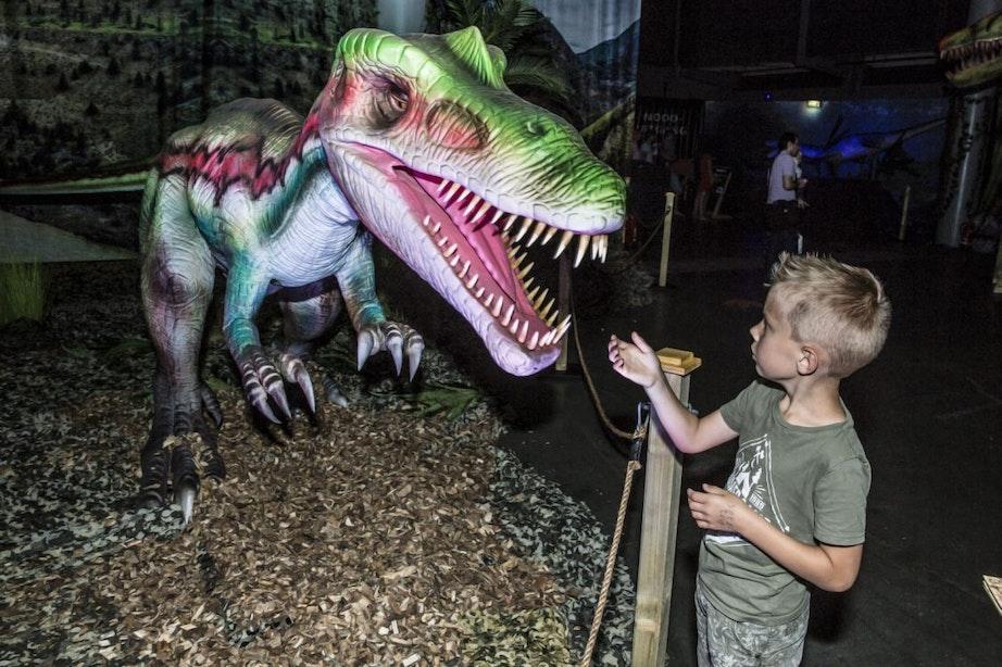 Meer dan zestig levensechte dino's te zien in Utrecht