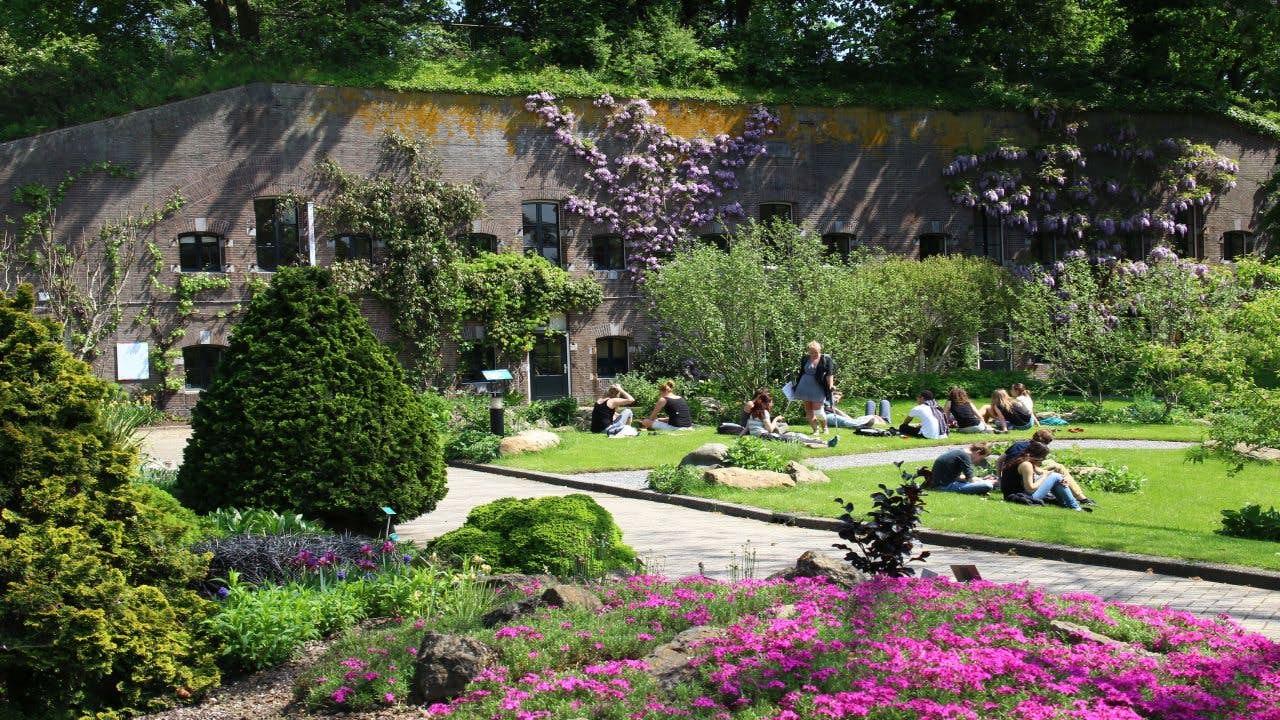 Botanische Tuinen Utrecht weer open voor publiek   De Utrechtse Internet  Courant