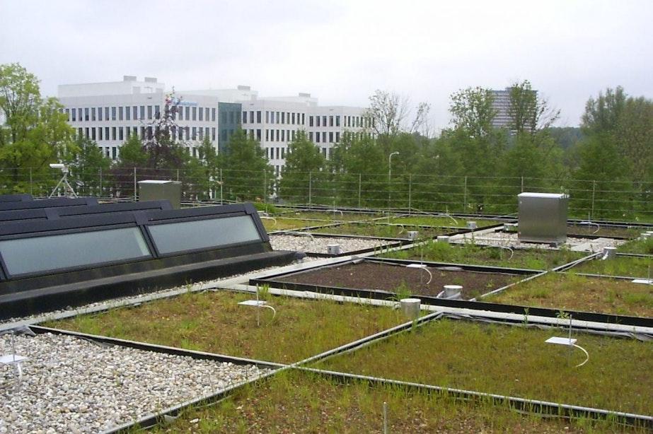 316 Utrechtse bushaltes krijgen groene daken