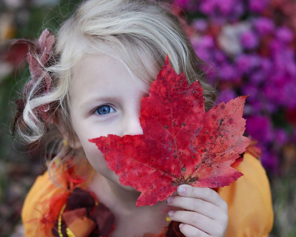 Dagtip: Gratis kinderfestival bij ANNE