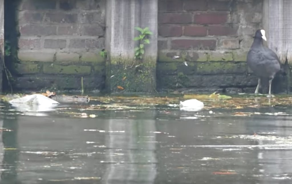 WNF gaat plastic uit de Utrechtse grachten vissen