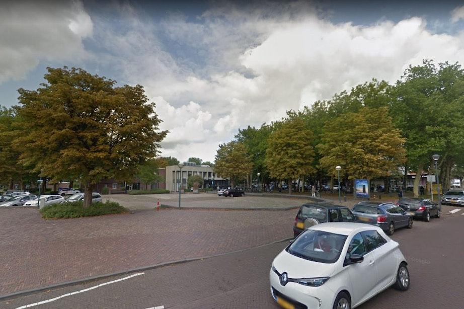 Tien bomen op Dorpsplein Vleuten moeten toch het veld ruimen ondanks protest Partij voor de Dieren