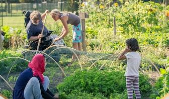 Vier Utrechtse projecten genomineerd voor Appeltje van Oranje