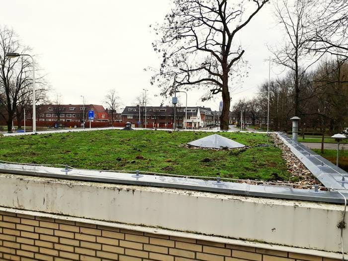 Nieuw groen dak van rioolgemaal Fuchslaan kan 4000 liter water opnemen