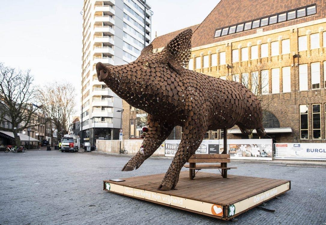 Stellingen over Utrechts nieuws: Eens of Oneens? Feesten, ouderen en asfalt