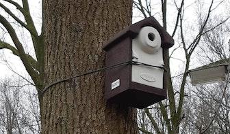 120 vogelhuisjes tegen eikenprocessierups in Utrecht
