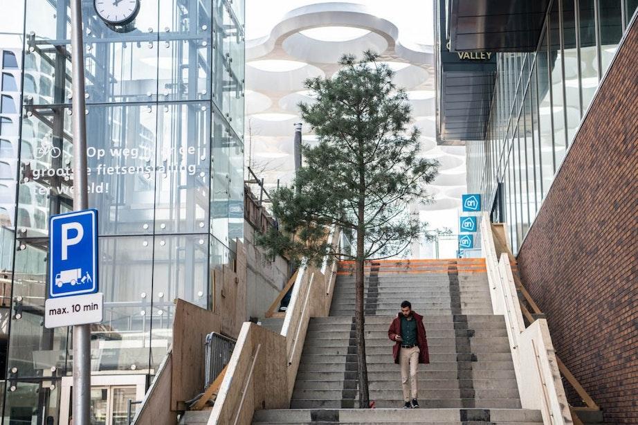 Staat deze boom op de trap bij het Stationsplein op een handige plek?