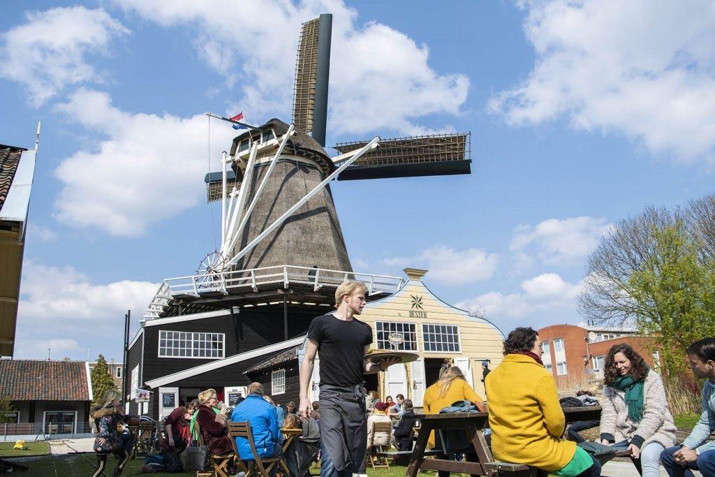 Bezoekers Culturele Zondag Go West enthousiast onthaald door Utrecht-West