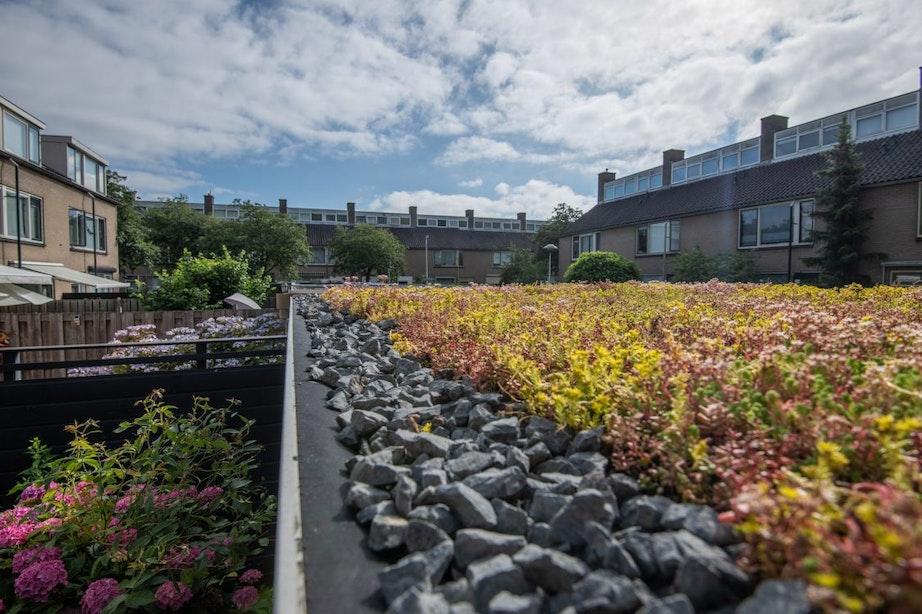 De tuin van de toekomst zorgt voor droge voeten in Utrecht