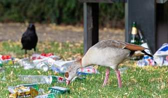 900 Utrechters maakten zaterdag de stad schoon tijdens World Cleanup Day