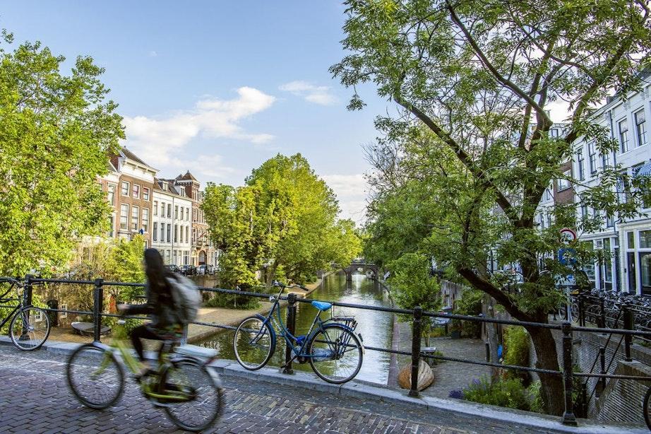 Utrecht onderaan op ranglijst aantal bomen per inwoners