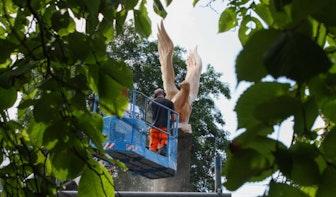 Kunstenaar zaagt enorme duif op Utrechtse begraafplaats