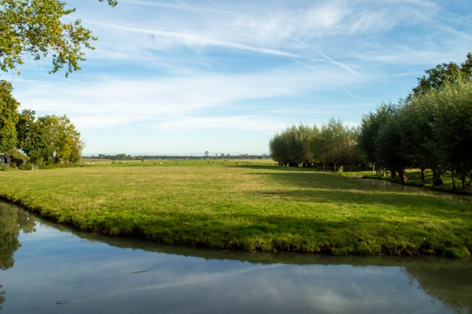 Dit zijn de verschillende plannen voor energieopwekking in de polders Rijnenburg en Reijerscop