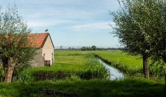 Grondeigenaren willen starten met betaalbare woningen in Rijnenburg
