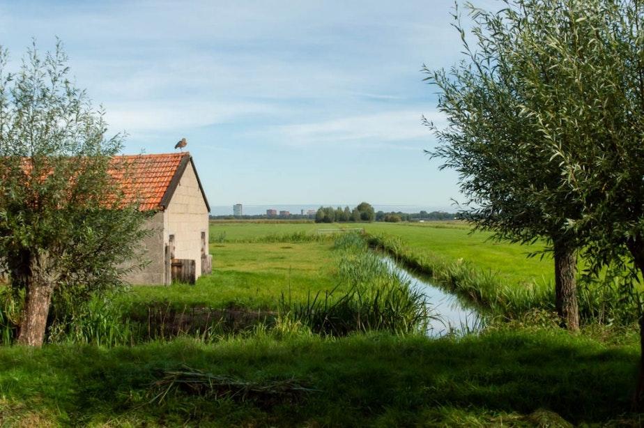 Bewoners Rijnenburg en Reijerscop dreigen met miljoenenclaim als gemeente doorgaat met windmolens
