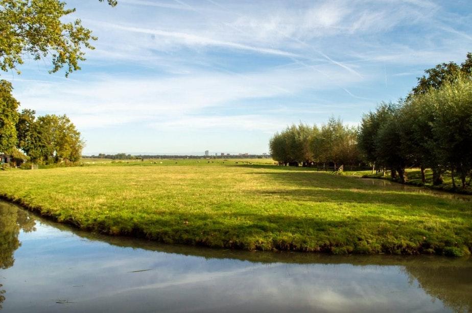 Vijf vragen over polders Rijnenburg en Reijerscop