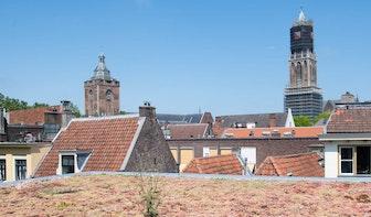 Ruim 530 Utrechters kregen vorig jaar groen dak met behulp van gemeente