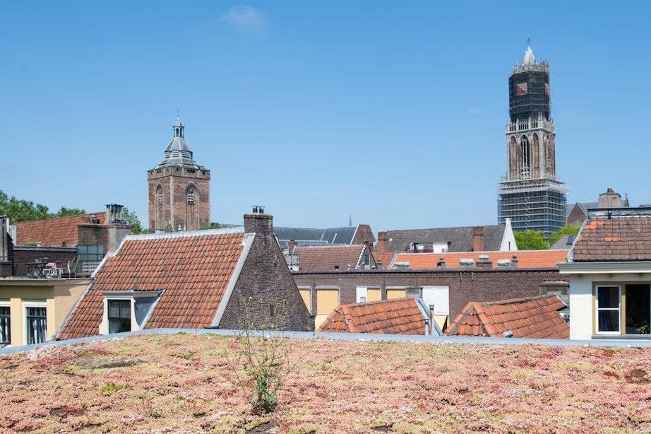 Provincie Utrecht gaat inwoners en bedrijven helpen bij de aanleg van een groen dak