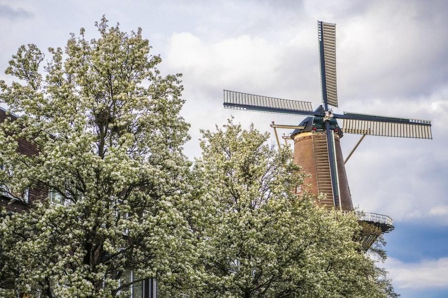 Na tien jaar gaat Utrechtse molen eindelijk weer volop draaien