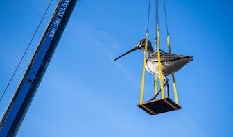 Drie meter hoog beeld van vogel geplaatst op dak nieuwe parkeergarage Berlijnplein