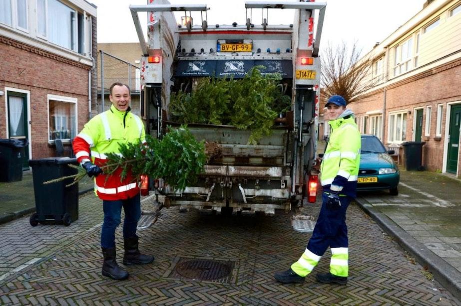 Wethouder Klaas Verschuure helpt bij kerstboominzameling in Utrecht: 'Inmiddels 200.000 kilo opgehaald'