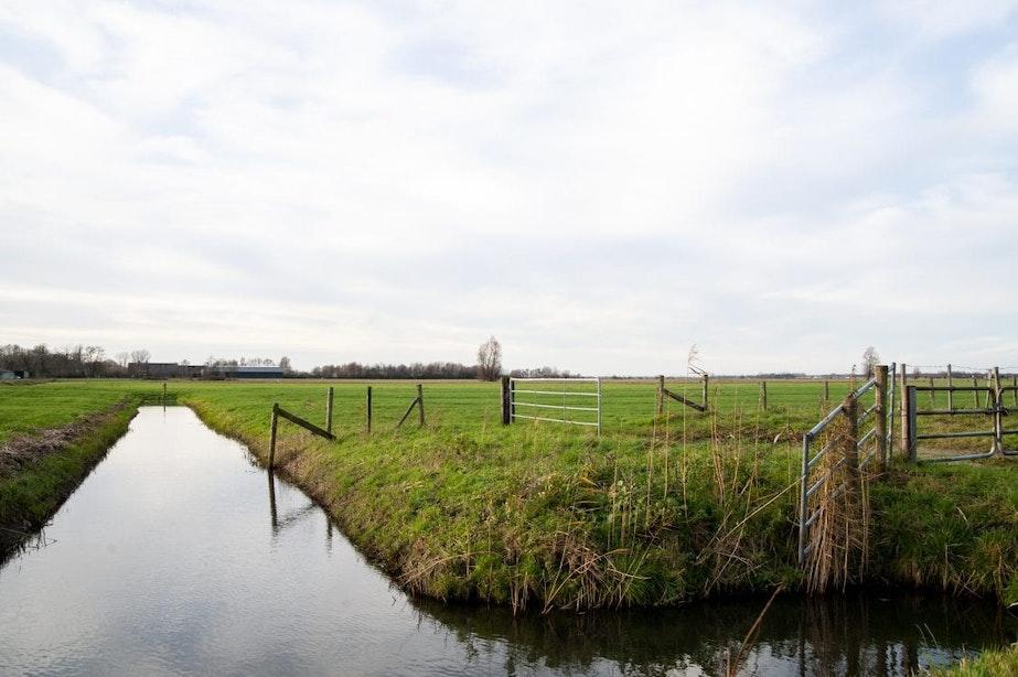 Er is goedkeuring; plan voor windmolens en zonnevelden Rijnenburg kan verder worden uitgewerkt