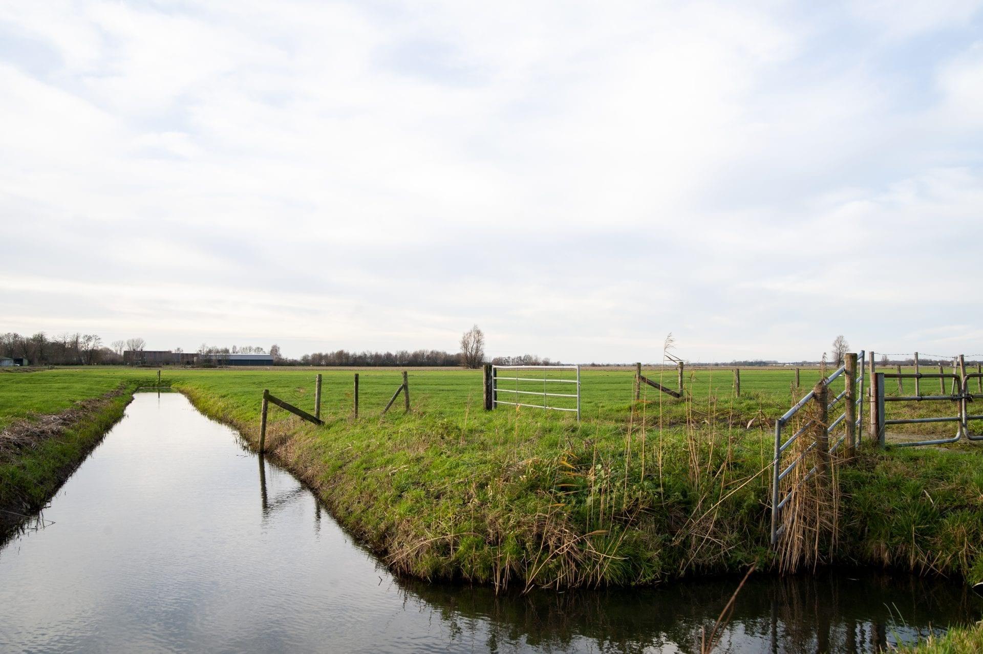Er is goedkeuring; plan voor windmolens en zonnevelden Rijnenburg kan verder worden uitgewerkt - De Utrechtse Internet Courant